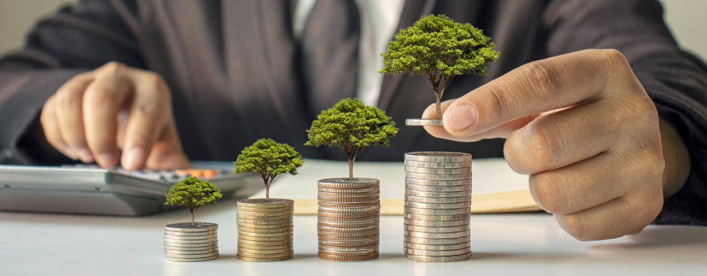 Upside CFO Services